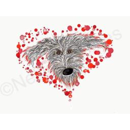 Hairy grey lurcher head with bubbles