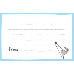 Notecards - size of a business card - 20