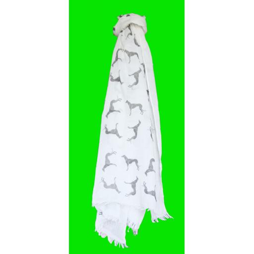 Frayed Greyhound Scarf - variety of colours