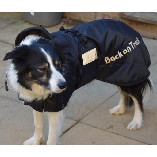 Mesh Dog Rug - large