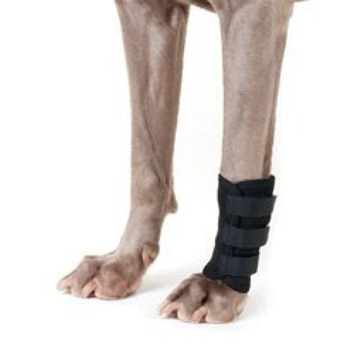 Front Leg Wrap