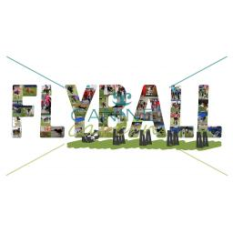 FLYBALL ARTWORK V2 - Watermarked-01.jpg