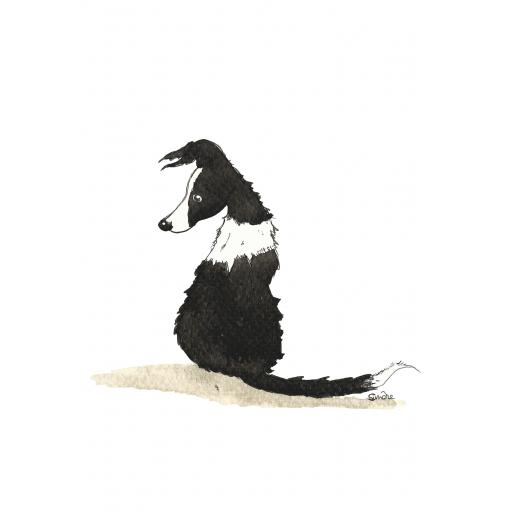 Border Collie - A4 print, A5 or A6 blank card