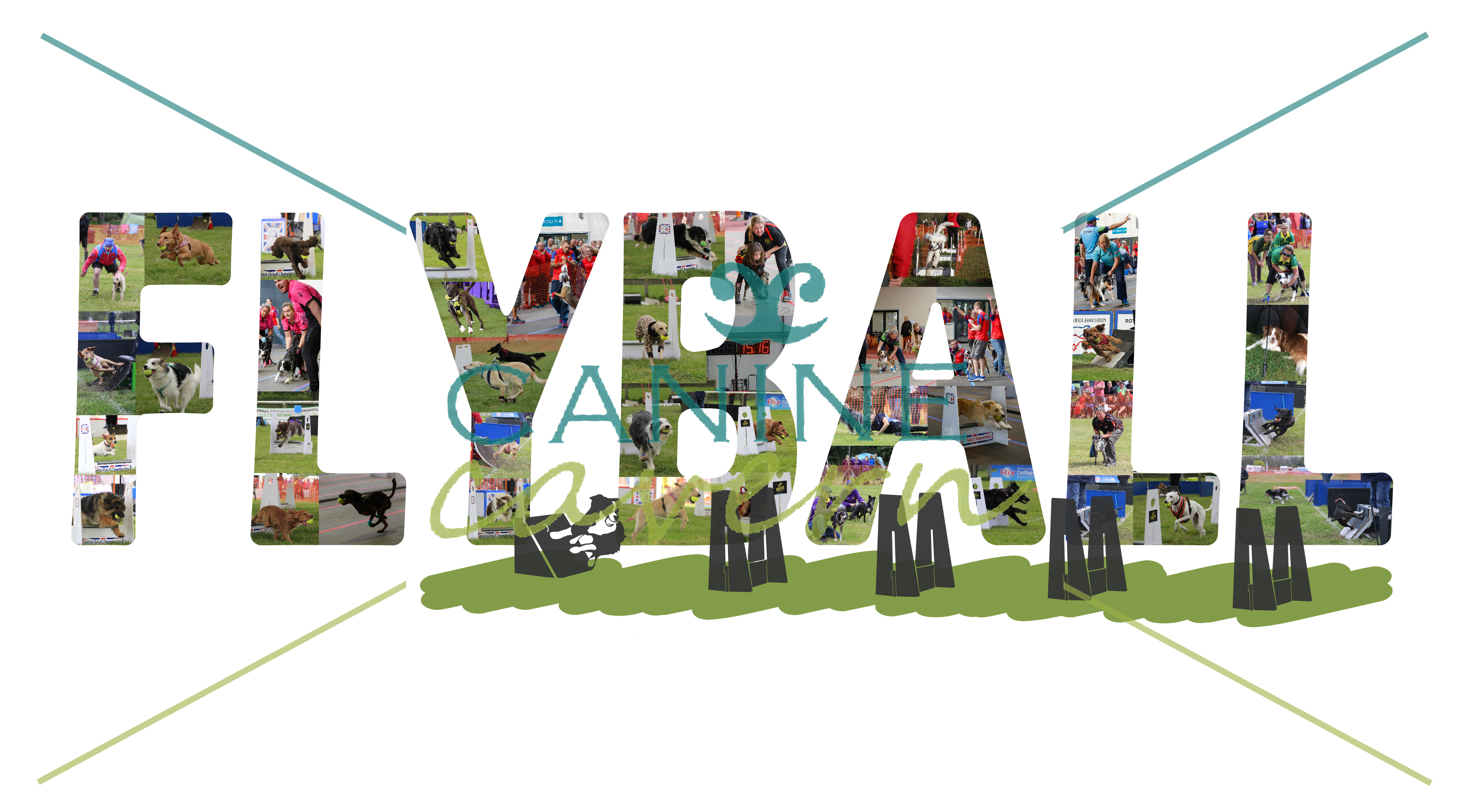 Flyball Photo Montage