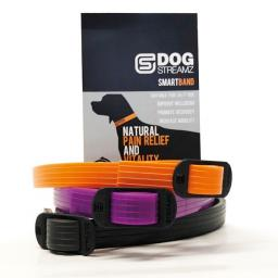 StreamZ Dog Collar