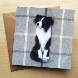 SharonS_BorderCollie_Card_large.jpg