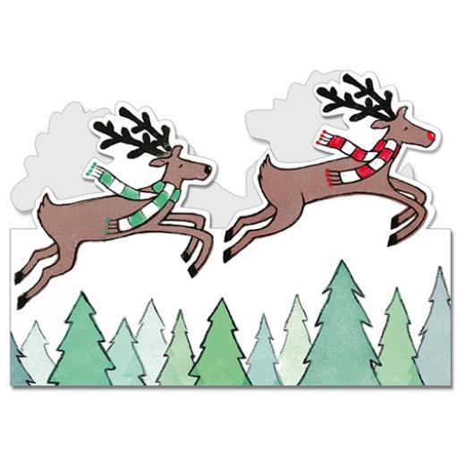 Flamingo Cards, Gift Wrap and Advent Calendars