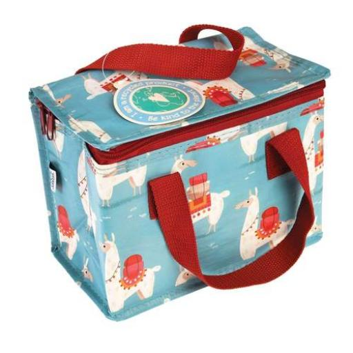 Insulated lunch boxes, using recycled bottle material